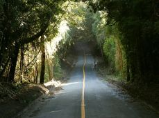 Anfahrt zum Vulcano Osorno