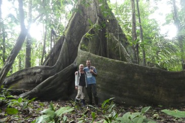 PN Yasuni, Tiefland, Amazonas, Dschungeltour, Sacha Runi Lodge